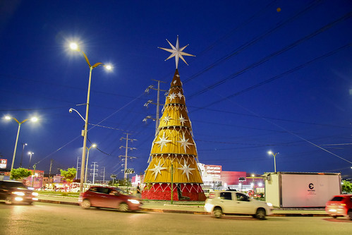 11.12.2020 Árvore de Natal da Bola do Produtor