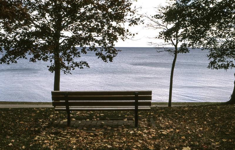 Prime Lake View