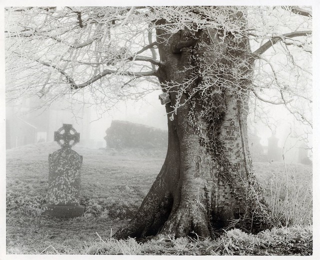 Hill of Tara Graveyard. Mist & Ice