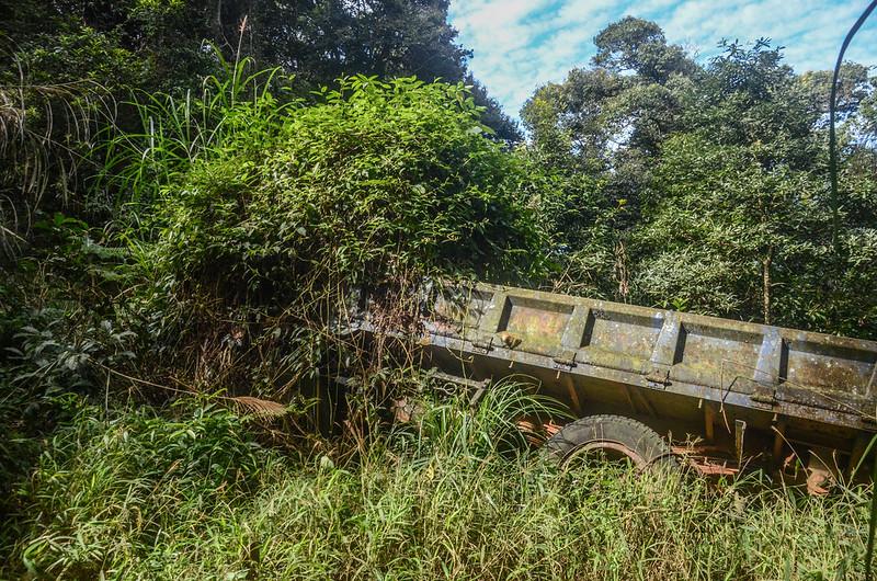 林道廢棄卡車