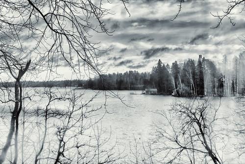 monochrome halosenniemi stg view through window water branch sky tree quiet tuusulanjärvi laketuusula tusbyträsk tuusula tusby finland suomi pekkanikrus skrubu pni museokortti