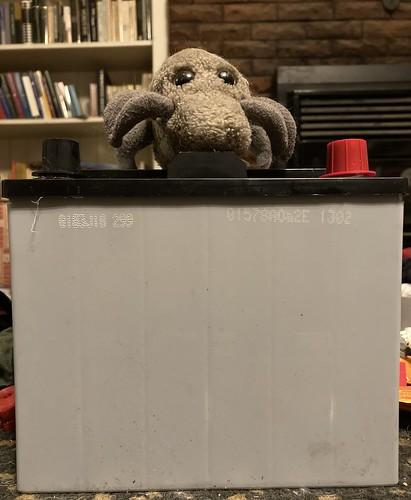 Battery Mite