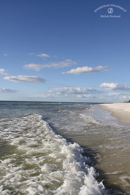Cape San Blas FL 2020 (72)