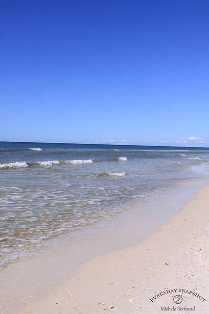 Cape San Blas FL 2020 (62)