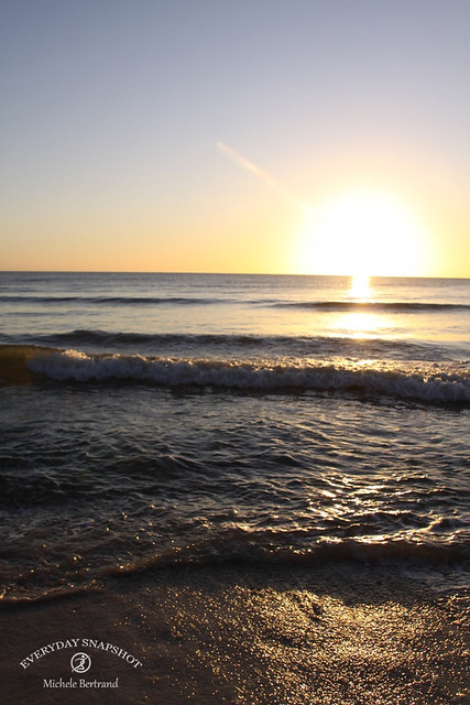 Cape San Blas FL 2020 (53)
