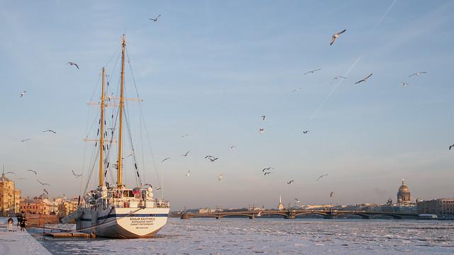 Sailship Birds St.-Petersburg