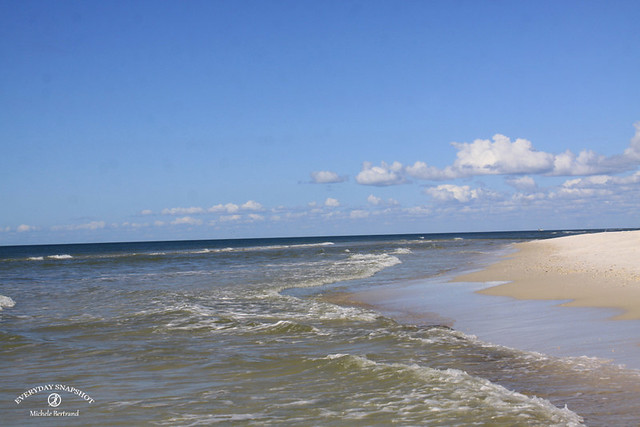 Cape San Blas FL 2020 (61)