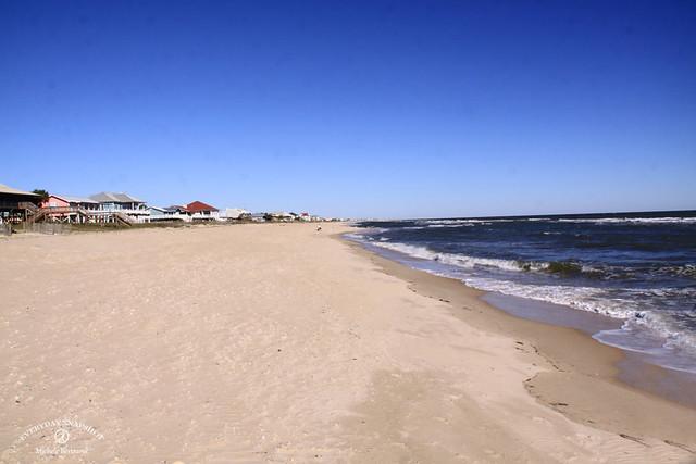 Cape San Blas FL 2020 (43)