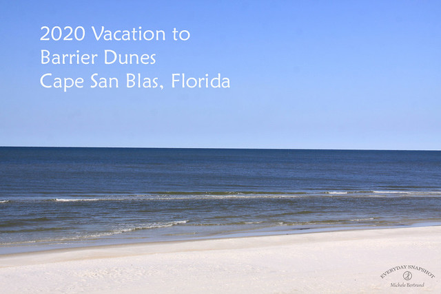 Barrier Dunes, Cape San Blas, Florida 2020 Vacation