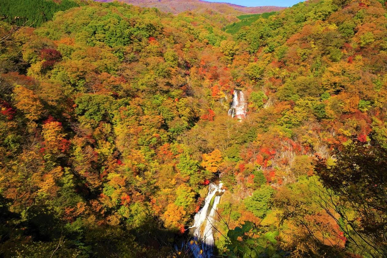 【日光】霧降の滝の紅葉