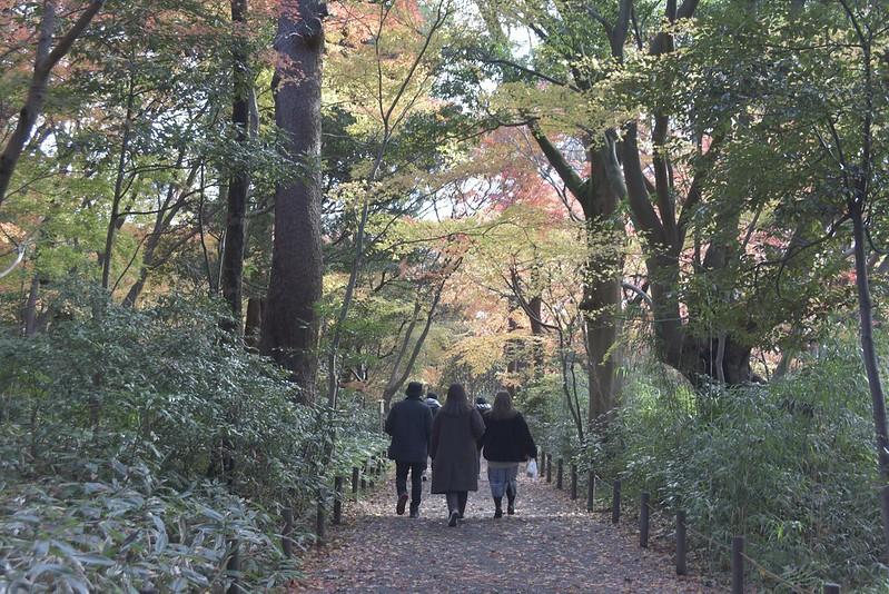 金沢城址公園の紅葉