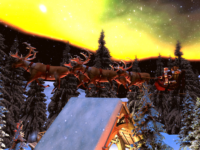 Peaceful Winter Dreams - On Dasher, Pracer and...