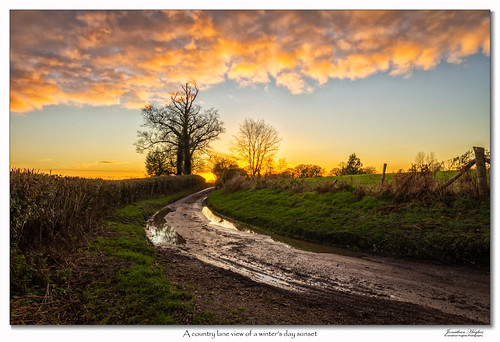 goldenhour golden winter winterlane westsussex england december