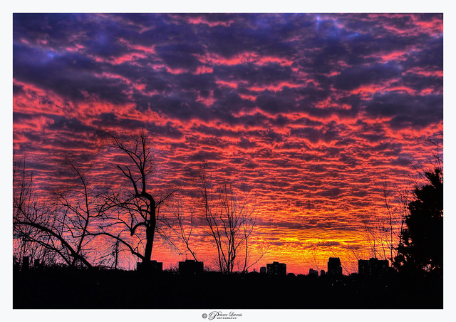 December Sunset. (explored)
