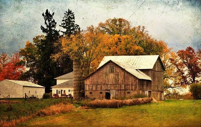 Autumn Awesomeness #50 (Explored)
