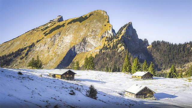 _DSC30826 The Vormauer Pasture with its alpine huts and the striking Mountain Schafberg / Upper-Austria