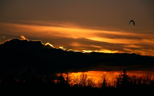 landscape sunset sundown cloud trees