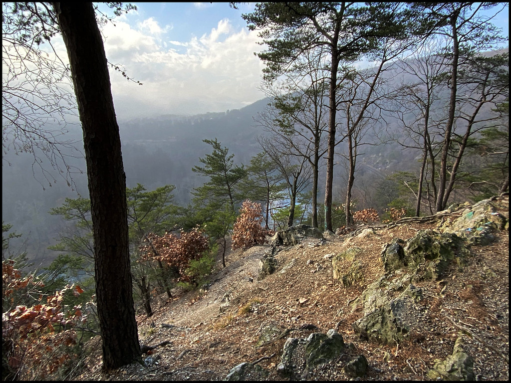 12-12-20 - View from the mountain trail