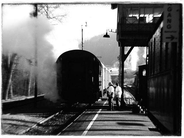 Rheingold Club train BW #2