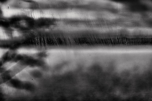 monochrome stg view through window surface water branch sky tree quiet tuusulanjärvi laketuusula tusbyträsk halosenniemi tuusula tusby finland suomi pekkanikrus skrubu pni