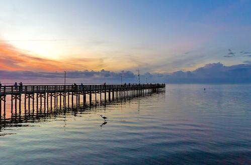 canon6d florida fall sunset sky november water scenery landscape gulf pier bird fishing explore blue