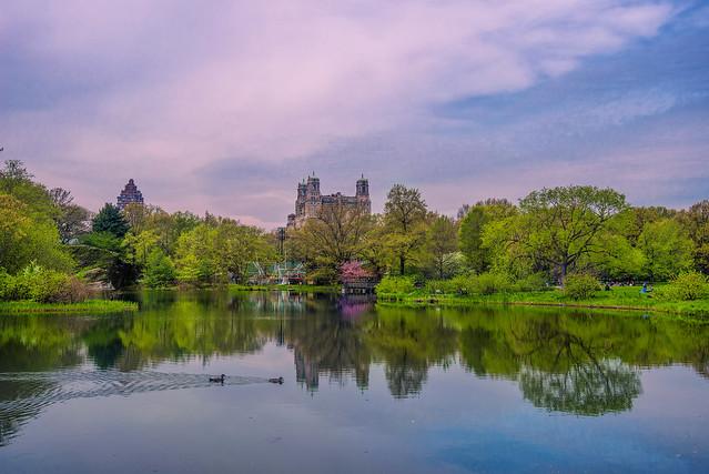 Central Park (on Explore - 13/12/2020)