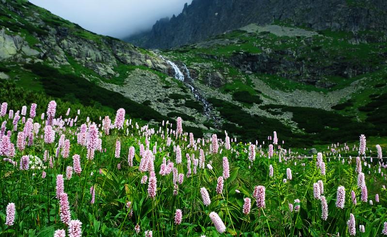 Velické pleso in the High Tatras, Slovakia