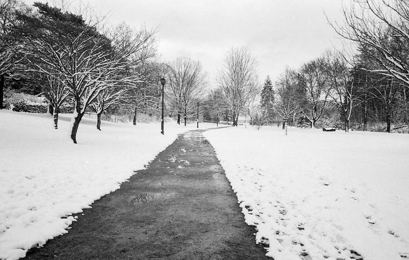 Gairloch Garden Path Winter Wonderland