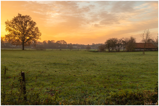 Sunrise in the countryside