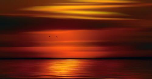 mood atmosphere horizon landscape seascape sunset orange red birds geese flying flight digital art flowing glowing glowingandflowing flowingandglowing