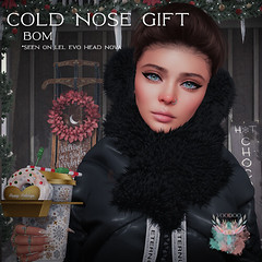 Voodoo - Cold Nose Gift