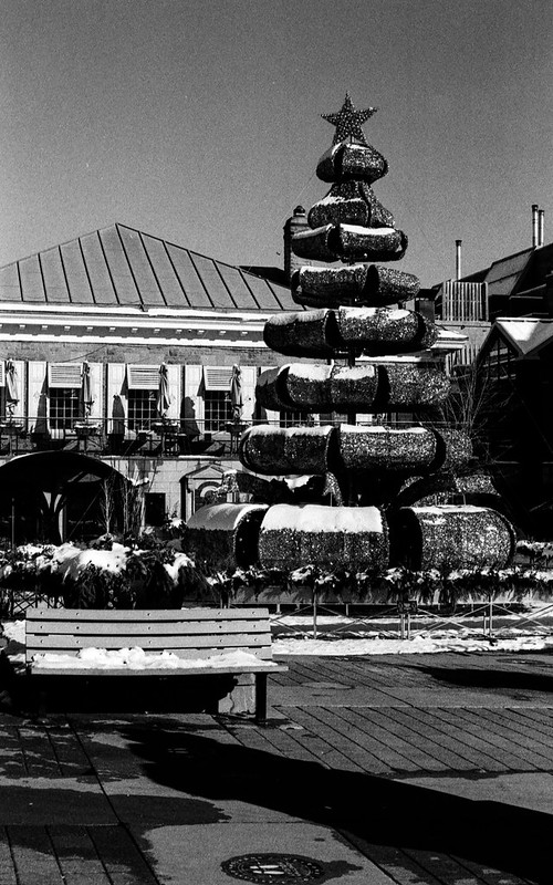 Modernist Christmas Tree in the Square_