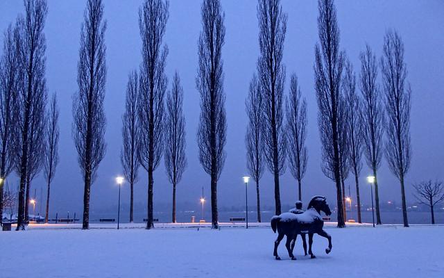 Der einsame Mann und das Pferd