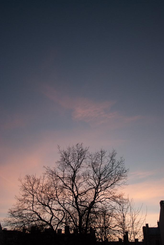 17:08:42 DSC_9434
