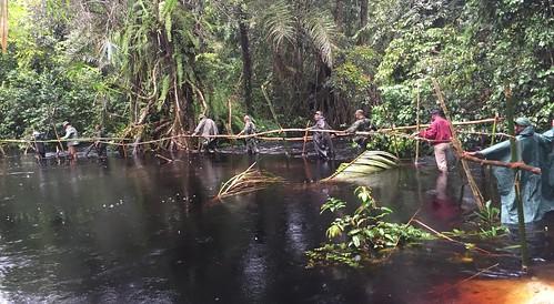 Flooded bridge 1_Nyama tende