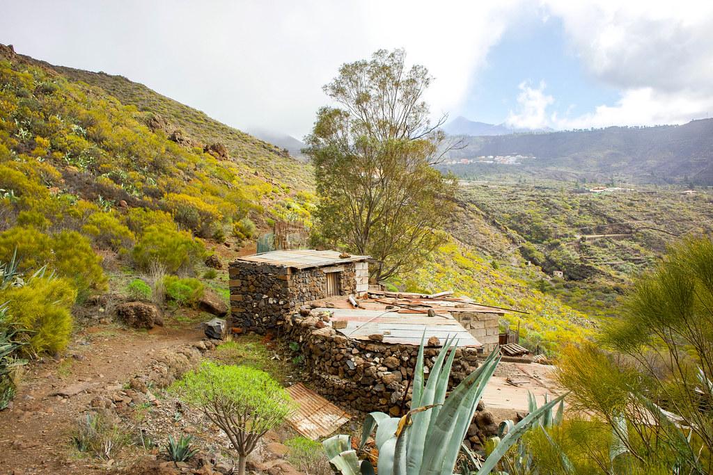 Casa de pastores en el sendero circular desde El Molledo en Teno