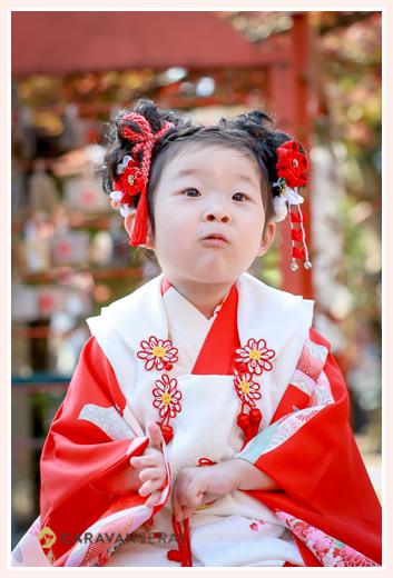 七五三 3歳の女の子 赤い着物に白い被布