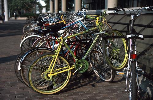 Harvard Bicycles