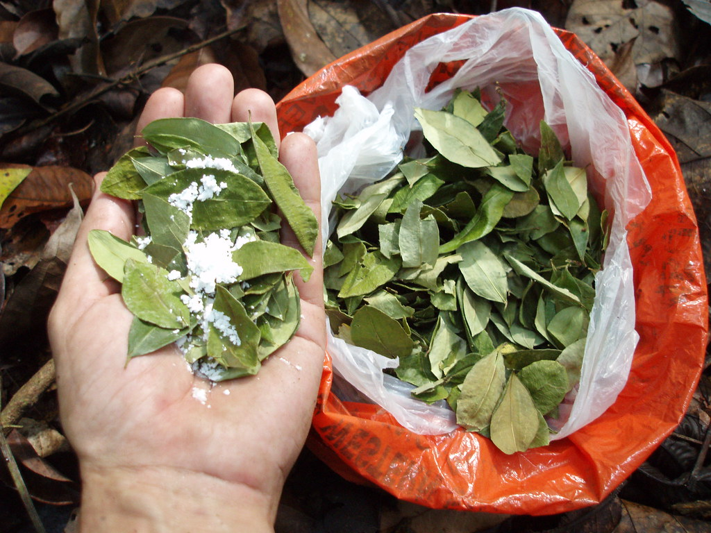 """When in Rome do as the Romans do ...""  Before leaving the town of Rurrenabaque, tour operator Luis insists I buy a bag of coca leaves plus baking soda (biko), cost $2."