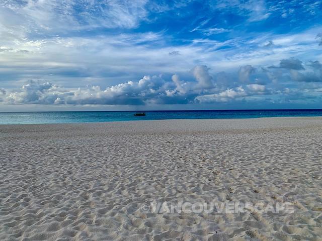 Bucuti & Tara Beach Resort-15