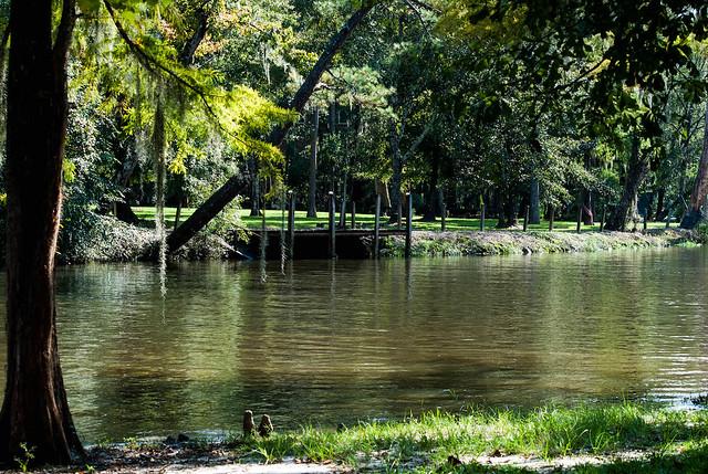 Walk along the Bayou