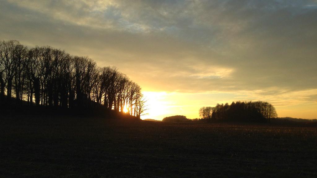 Herbstlicher Abendspaziergang (Sonnenuntergang 1)