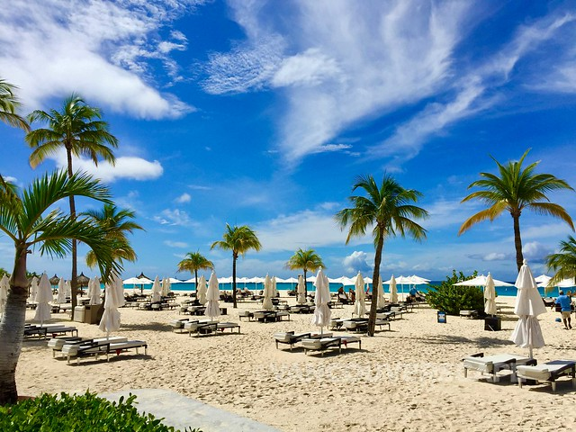 Bucuti & Tara Beach Resort-33