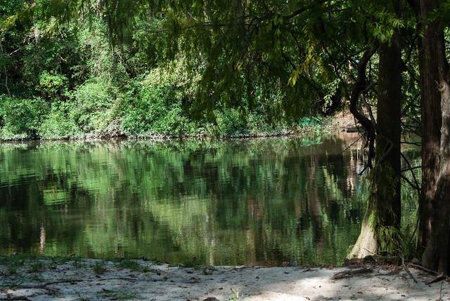 Louisiana Scenery