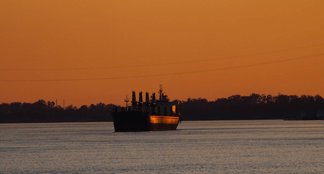 Sailing Down River