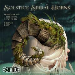 Solstice Spiral Horns
