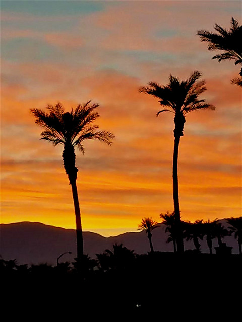 Desert Sunset Glow, California