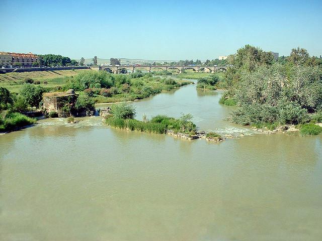Espagne, la ville de Cordoue sur le Guadalquivir en Andalousie