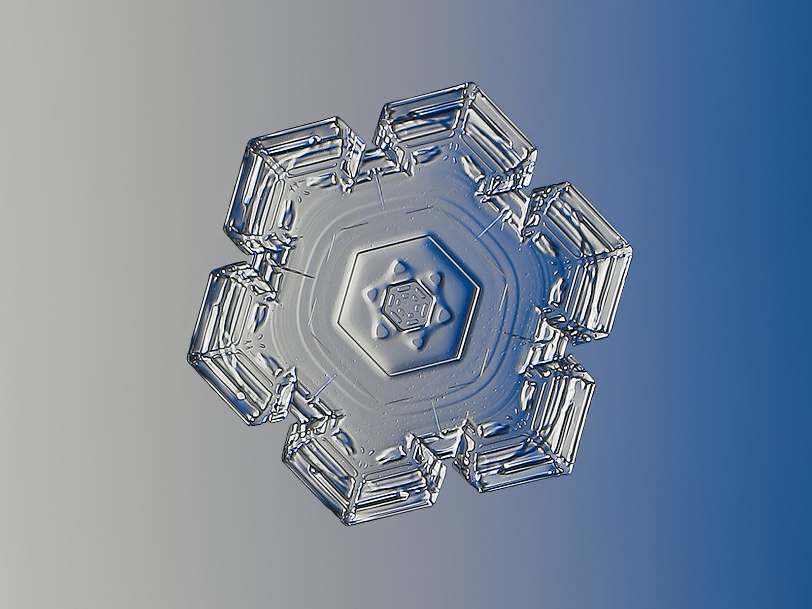 Snowflake (explore 16 Dec 2020)