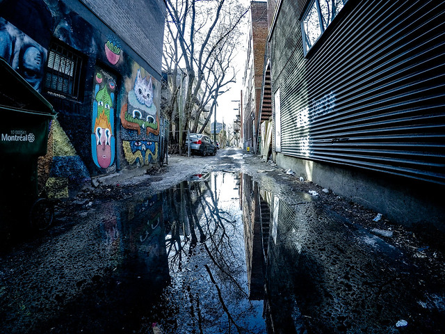 Back Alley Reflections